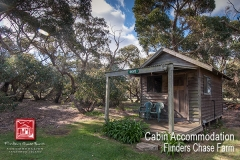flinders-chase-farm-cabin-accommodation-external1