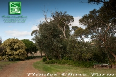 flinders-chase-karatta-lodge-entry-gardens