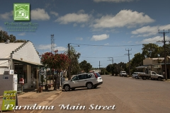 attractions-parndana-town