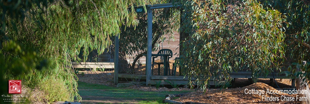 Cabin Accommodation on Kangaroo Island - Flinders Chase Farm